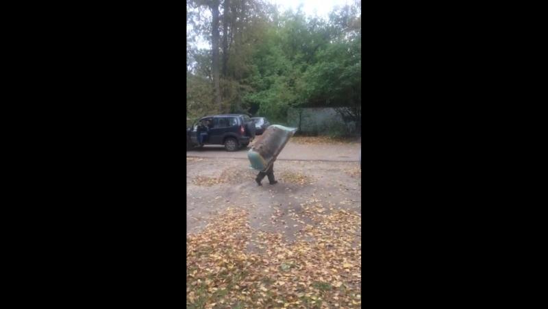 Video-24-09-17-07-26 (1)