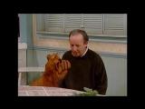 Alf Quote Season 1 Episode 20_Цветок