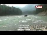 В Сибири засняли на видео живого мамонта