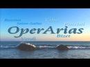 Opera Arias: Verdi, Bizet, Puccini, Saint-Saens, Cilea, Rossini...