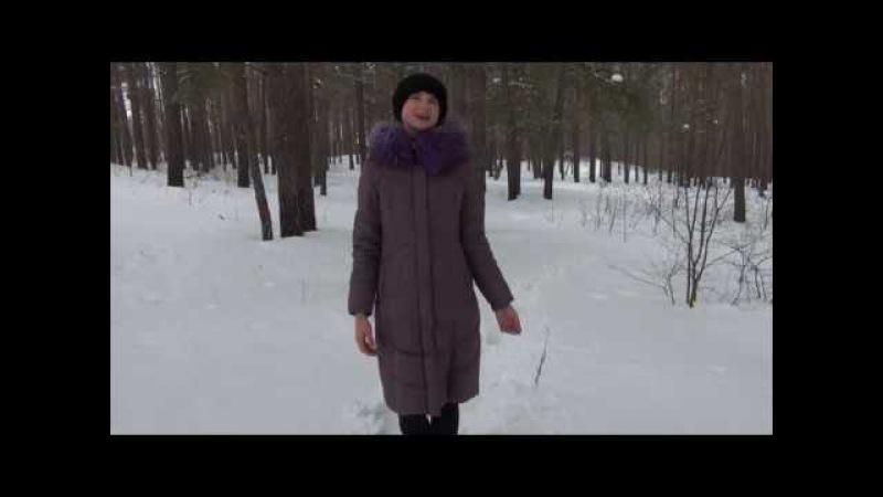 Стелла Авис Волшебной тропою да в зимнюю сказку
