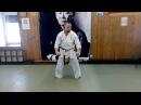 The elements of kata Sanchin Uechi ryu karate / 28 Budo akademy in Moscow
