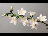 ABC TV How To Make White Peachleaf Bellflower Paper Flower - Craft Tutorial
