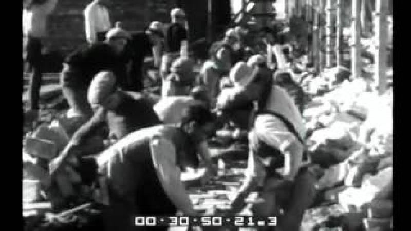 Si redime la terra, si fondano le città........Mussolini......Come sorge Sabaudia