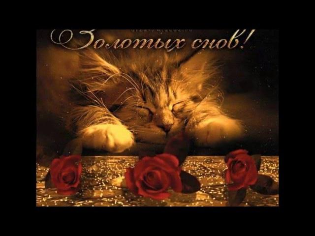 Добрый вечер и Спокойной ночи. Споки.