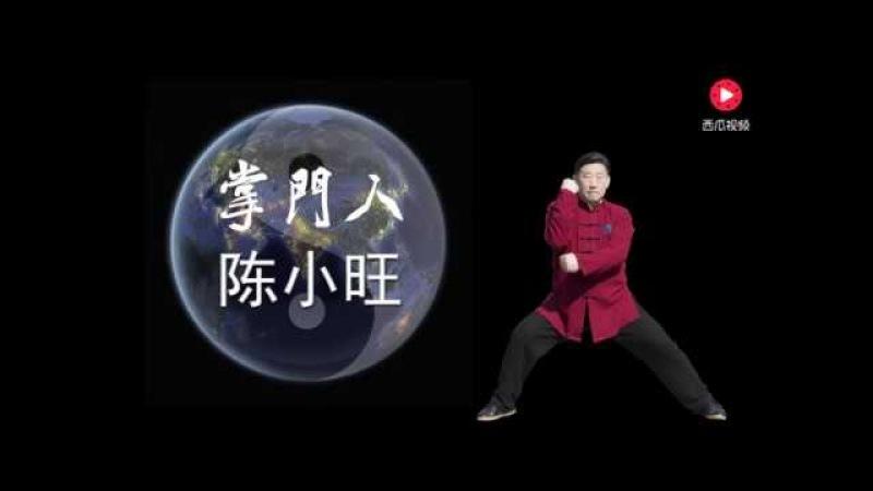陳家溝陳氏第十九世掌門人 陳小旺Chen xiaowang