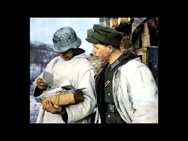 Письма немецких солдат с Восточного фронта Великая отечественная война