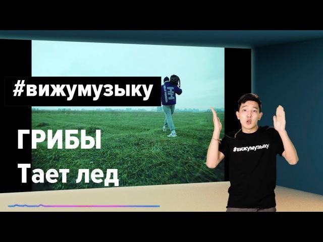 Грибы - Тает Лёд ВИЖУМУЗЫКУ