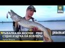 Рыбалка на Москве - реке. Судак и щука на воблеры. Артем Мишин. Anglers Practical