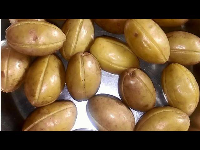 How To Make Gota Jolpai Achar  Olive Pickle Recipe   জলপাই আচার  গোটা জলপাই আচার রেসিপি