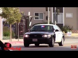 LAPD Dodge Charger + Slicktop Crown Vic Responding Code 3