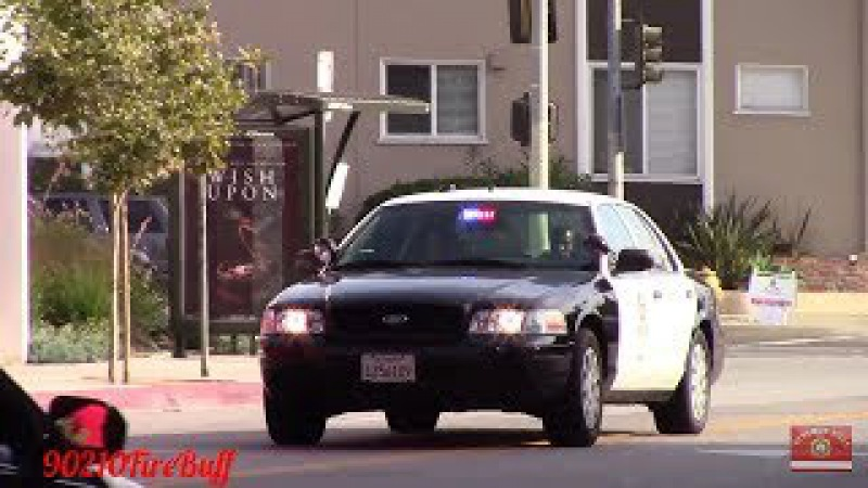 LAPD Dodge Charger Slicktop Crown Vic Responding Code 3