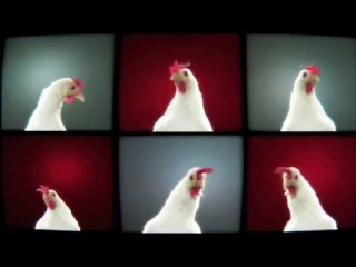 Techno Chicken Song Lengthened Version