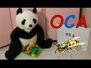 Семейка Веселых мишек Учим слога и буквы Веселые мультики TV