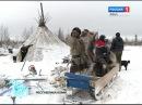 Опасные трудности и тихие радости Коми-оленеводов по дороге к Северному Ледовитому океану