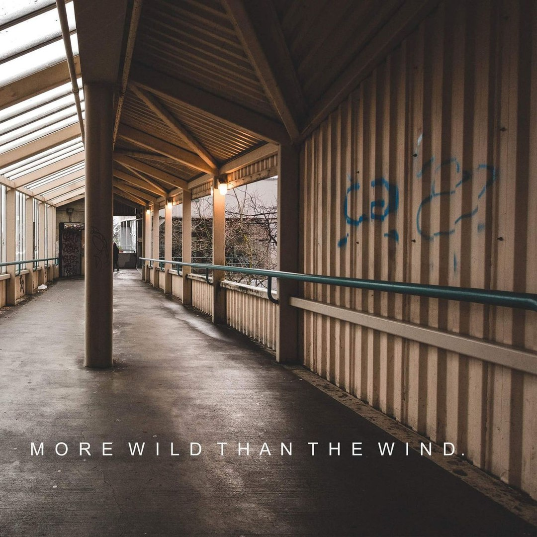 Shine Bright - More Wild Than the Wind [EP] (2017)