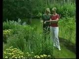 Основы Ландшафтного дизайна – Садовый дизайн (обучающий фильм) [uroki-online.com]