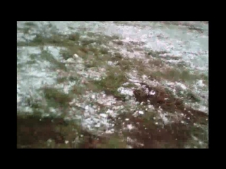 в поисках древности-48Пётр под снегом..отмороженый коп)