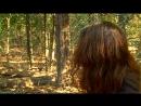 BBC «Лемуры Мадагаскара» (Познавательный, природа, животные, 2006)