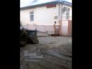 Голые на наших улицах 15.10.2017 Ростов-на-Дону Главный