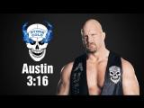 WWF Stone Cold Steve Austin Titantron