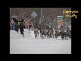 #ВоркутаНеМёд | Гонки на оленьих упряжках. Воркута, 2017 год.