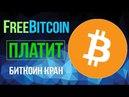 BITCOIN на халяву? Самый старый и надежный биткоин кран freebitcoin! Получай биткойны бесплатно
