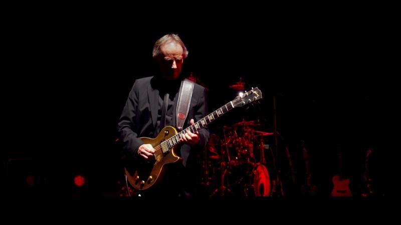 Descargar Roger Waters: The Wall BD25 en buena