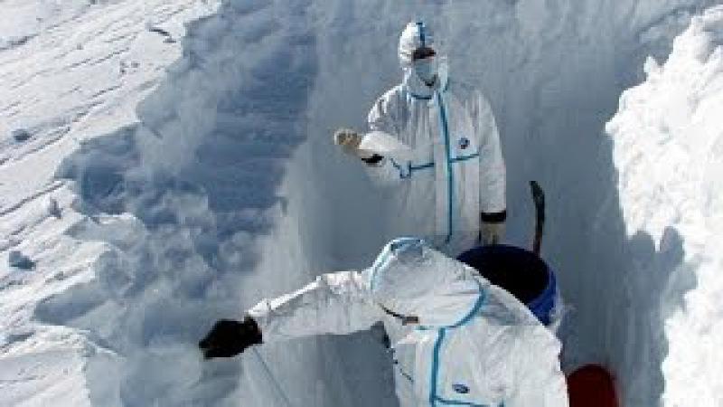 Под льдами Антарктиды спрятана ИНАЯ жизнь! Тайны шестого континента.
