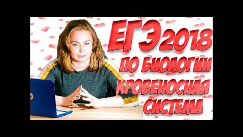 ЕГЭ 2018 по биологии. Вопросы и теория по кровеносной системе