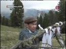 Алтайские шаманы против крестов