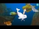 Животные водного мира. Мультики про морских животных