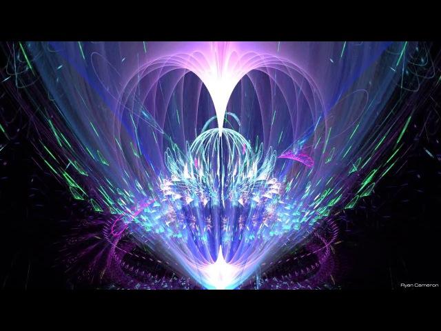 Holographic Heart Torus