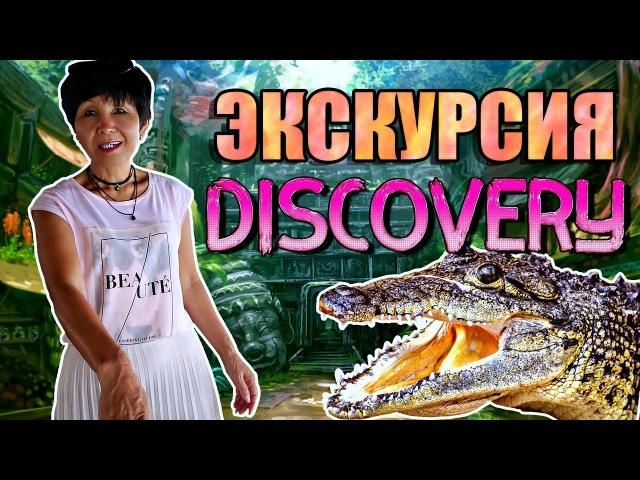 8 мест за 1 день 😲| Экскурсия Discovery 🐊| Паттайя