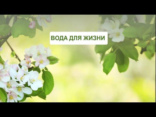 ДОКТОР ФЛЮРА О ВОДЕ ГИДРОПЛАЗМЕ