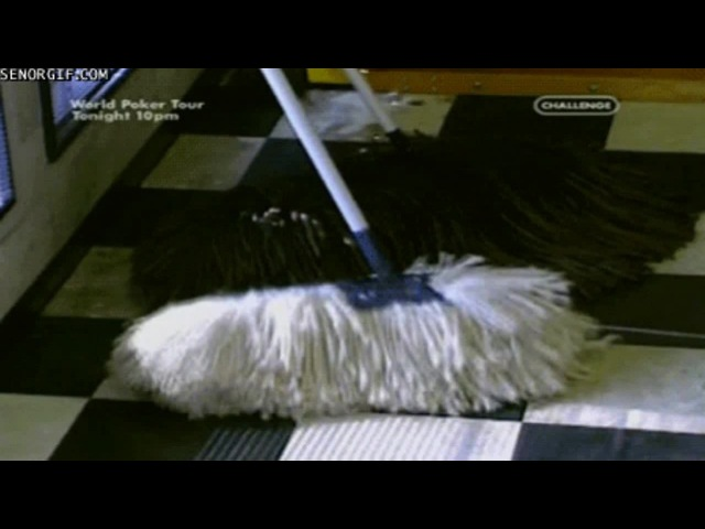 Jesus Christ, IT'S MOP DOG