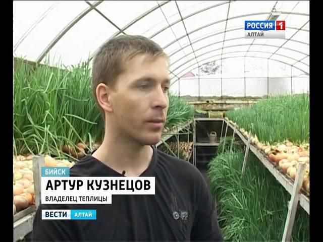 Житель Алтайского края построил под землёй теплицу для выращивания лука ;bntkm fknfqcrjuj rhfz gjcnhjbk gjl ptvk`q ntgkbwe lkz d