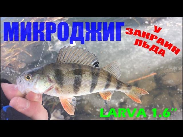 Fanatik Larva 1.6. Ловля окуня на спиннинг. Зимний спиннинг. Микроджиг.