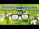 Плохое зрение, катаракта, глаукома - поможет ОЧАНКА