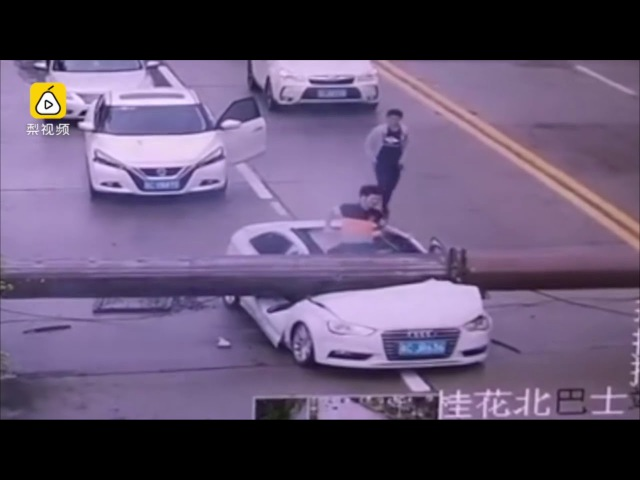 Narrow escape: driver miraculously survived after his car smashed by falling crane on road