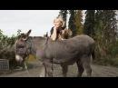 Доктор Ди: ветеринар Аляски | Операция Спасение совят