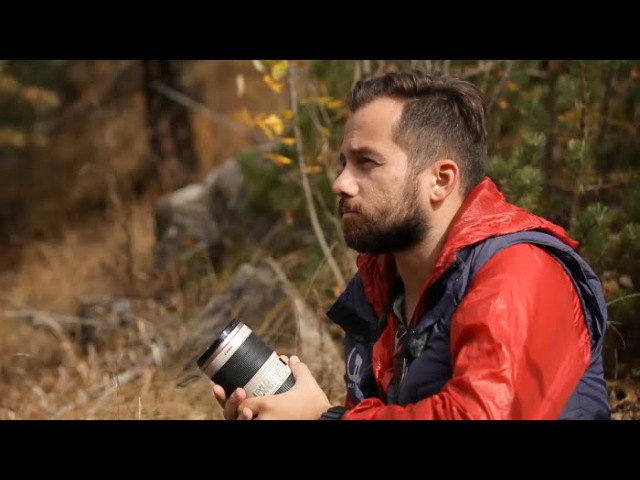 Организованное свидание с диким волком   За кадром 🌏 Моя Планета