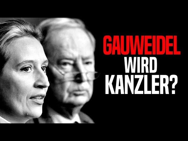 10 Gründe, warum die AfD stärkste Partei wird - Gauweidel wird Kanzler?