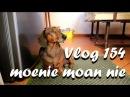 Vlog 154 moenie moan nie eet jou kaas en polony - The Daily Vlogger in Afrikaans
