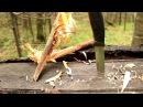 Самый простой и действенный способ разжечь костер в любую погоду