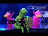 Kermit The Frog -