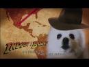 Индиана Джонс белая собачка