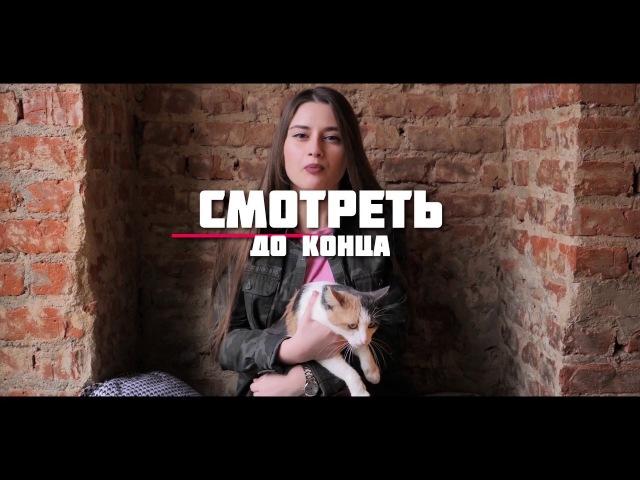 Рубрика Видеообзор за неделю №9 . Наглая норка.