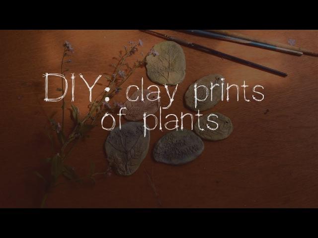 DIY: clay prints of plants