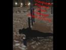 Друзья, не судите строго 🙈 мое первое видео 😄 . От... Казань 12.12.2017
